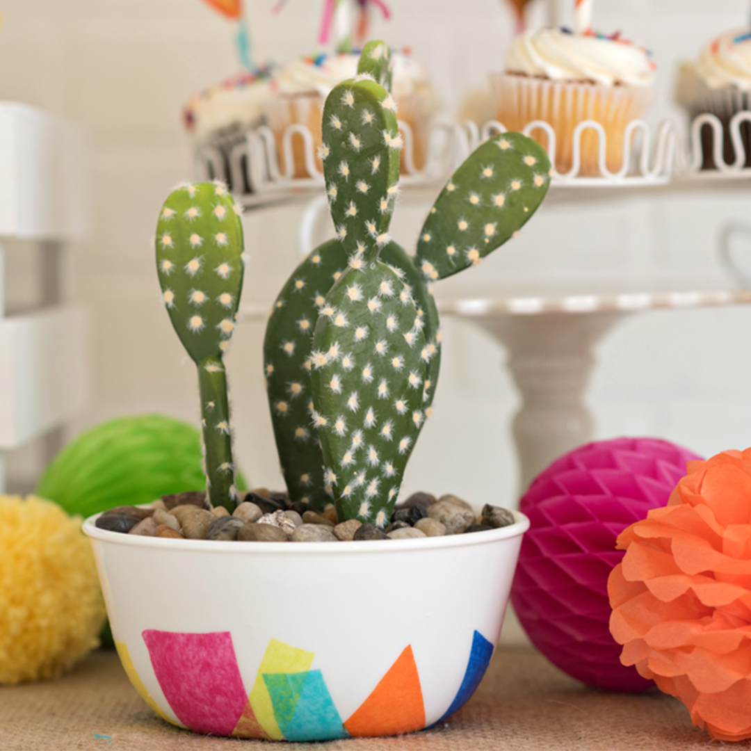 Party decorations - cactus