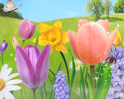 spring tulips and field of flowers and bugs