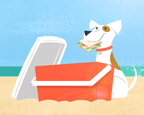 dog on beach with sandwich and cooler